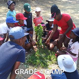 Grade 4 Camp